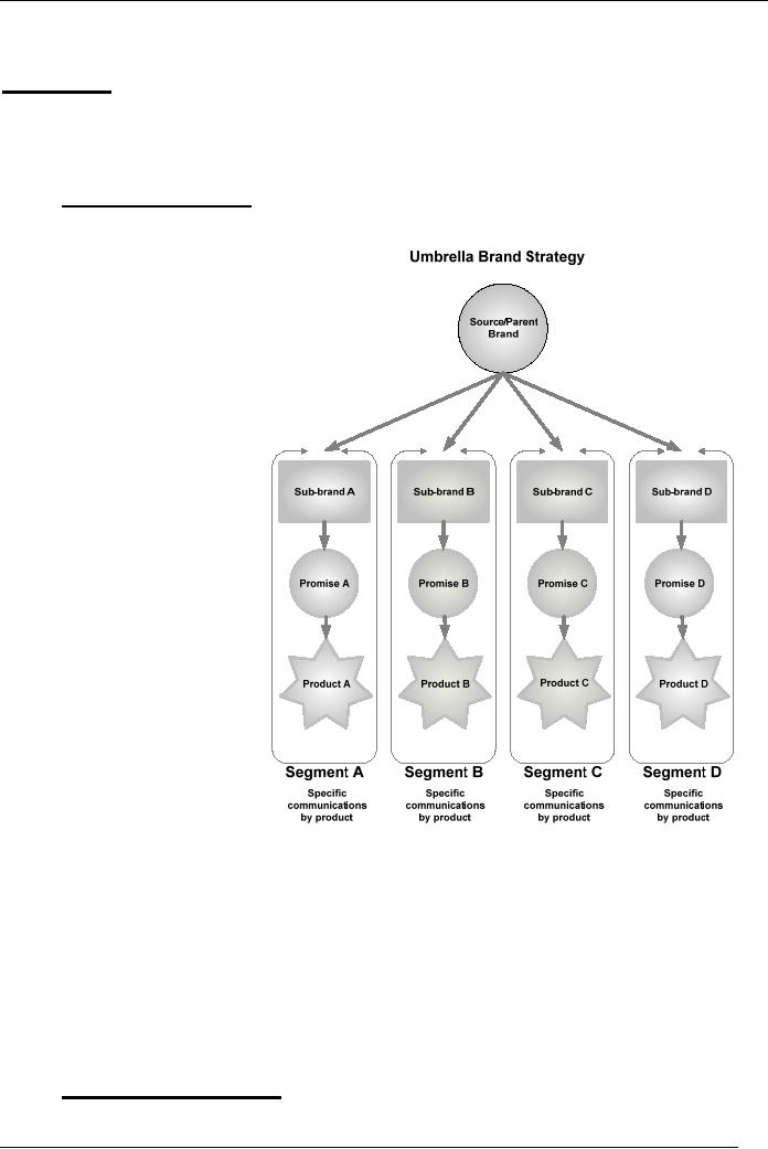 BRAND ARCHITECTURE:Source brand strategy Endorsing brand