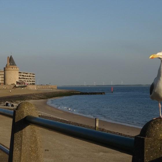 Boulevard Vlissingen - Informatie, achtergrond en heerlijk genieten!