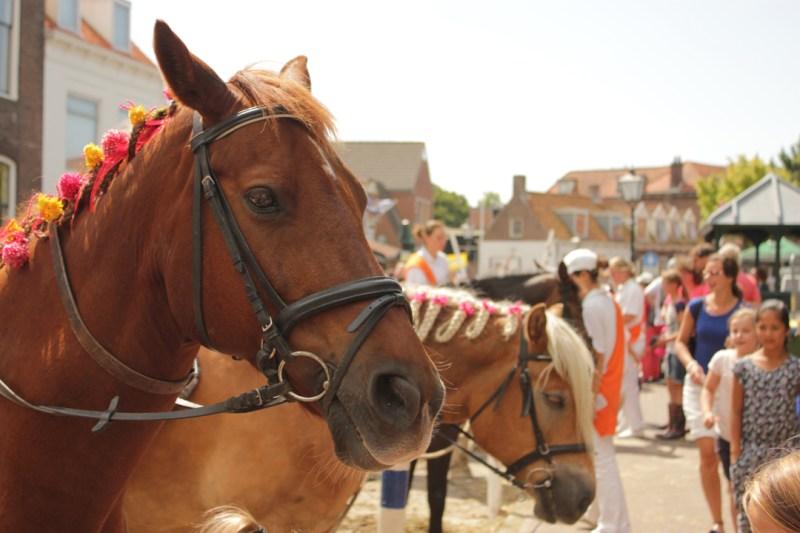 Versierde paarden bij Ringrijden