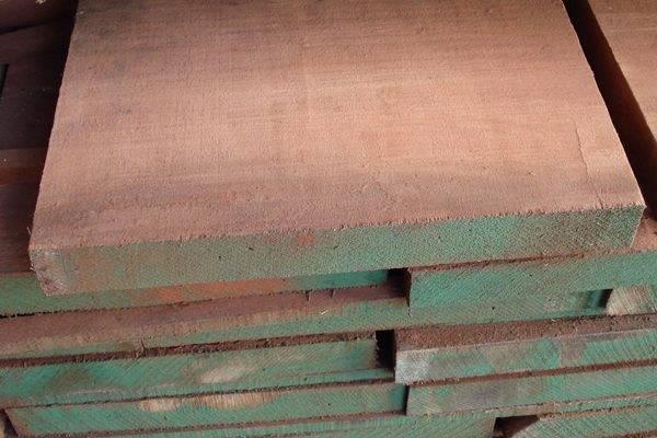 Le essenze del legno  Zega Legnami