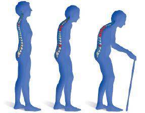 https://i0.wp.com/www.zeitenschrift.com/uploads/resized/extract/large/65_magnesiumchlorid-arthrose_und_osteoporose_sind_heilbar1.jpeg