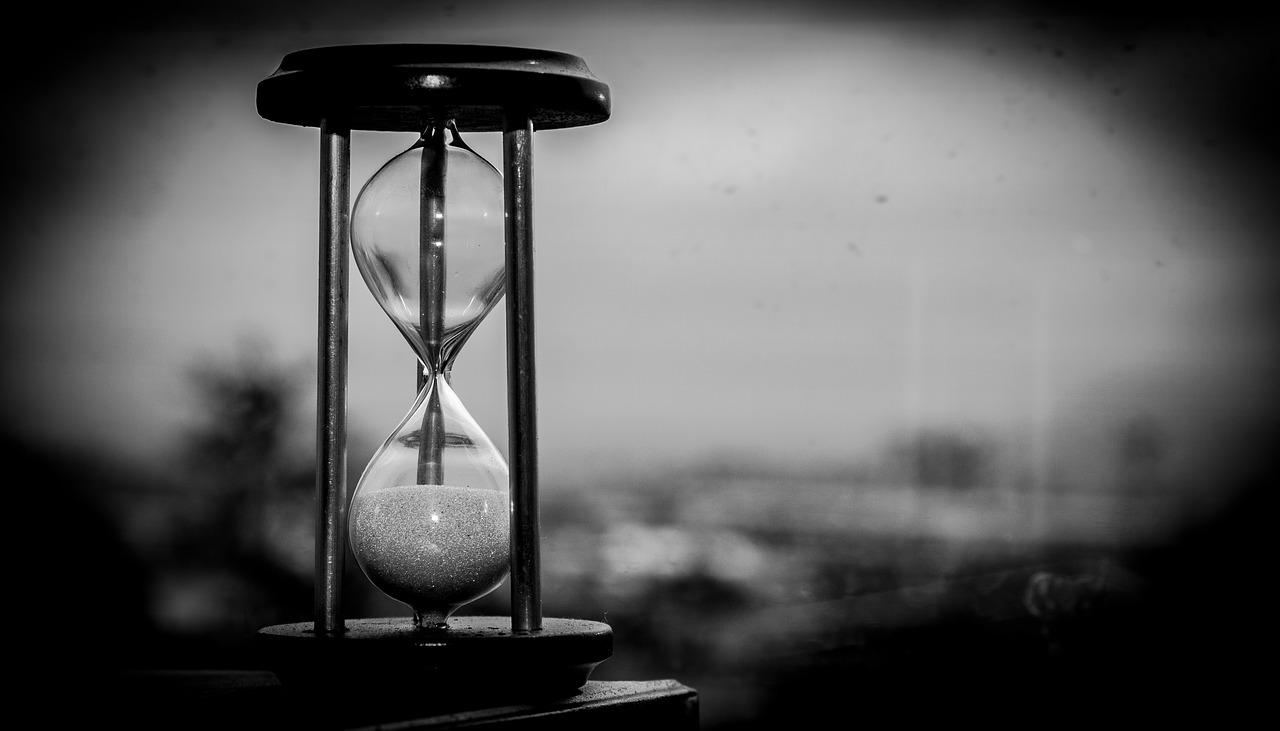 Zeitgeist – Die Geschichtswerkstatt