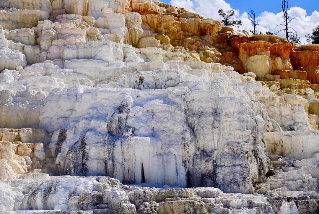 Mammoth Hot Springs 2018