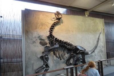 Tommy Pützstück Dinosaur National Monument I 2018