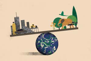 Mass of artificial objects on Earth may now outweigh living things