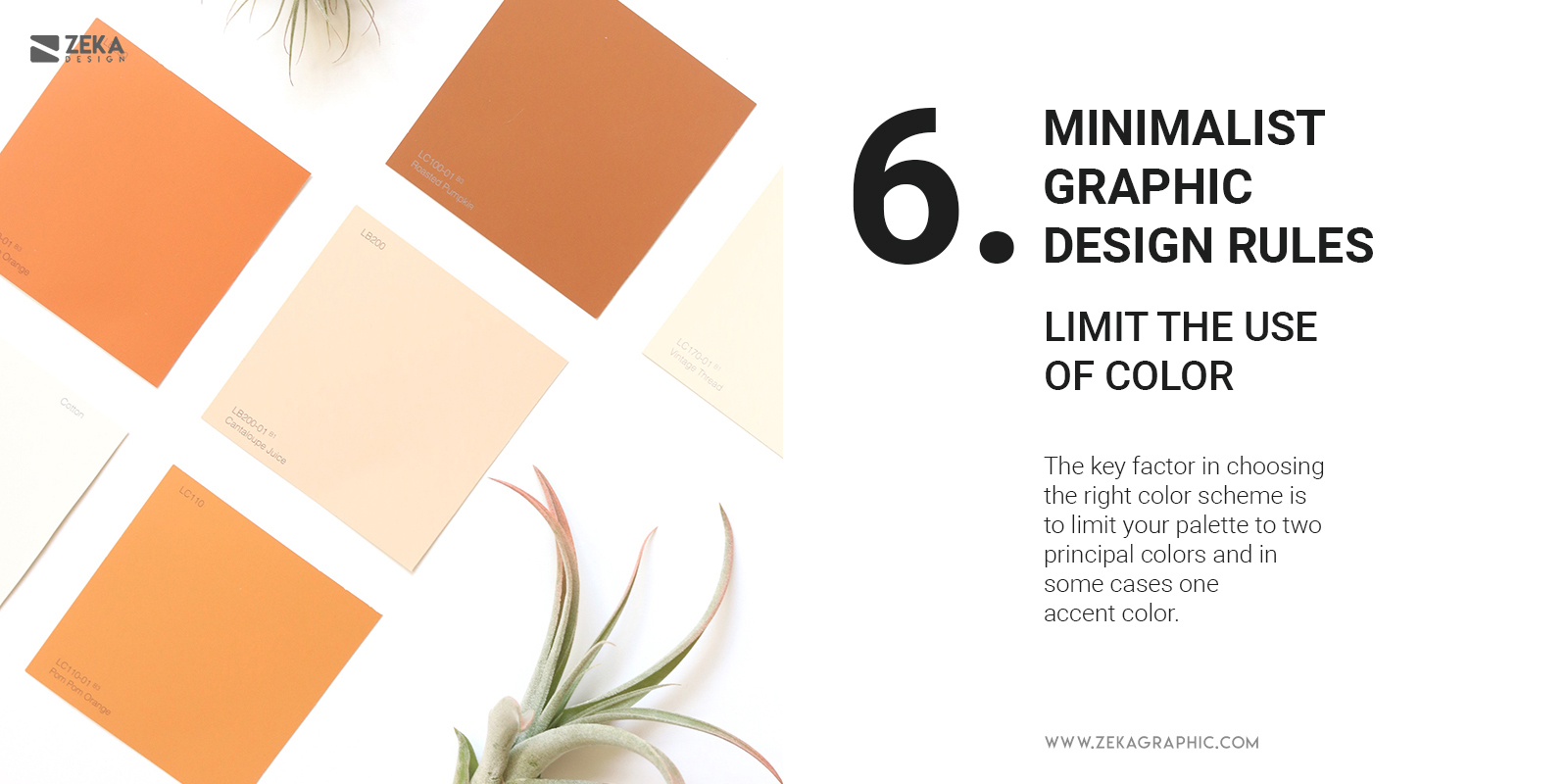 6 Minimalist Graphic Design Rules Color Palette