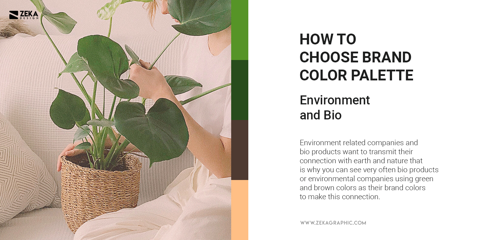 Environment and Bio Eco Brand Colors Trend Branding Tips