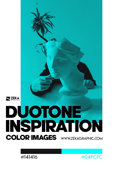 Graphic Design Color Duotone Inspiration 06