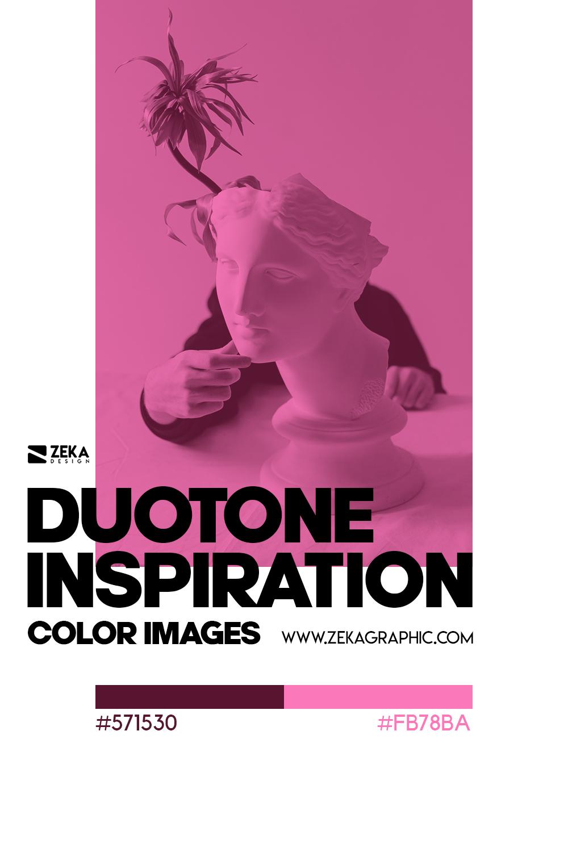 Graphic Design Color Duotone Inspiration 09