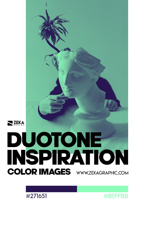 Graphic Design Color Duotone Inspiration 12