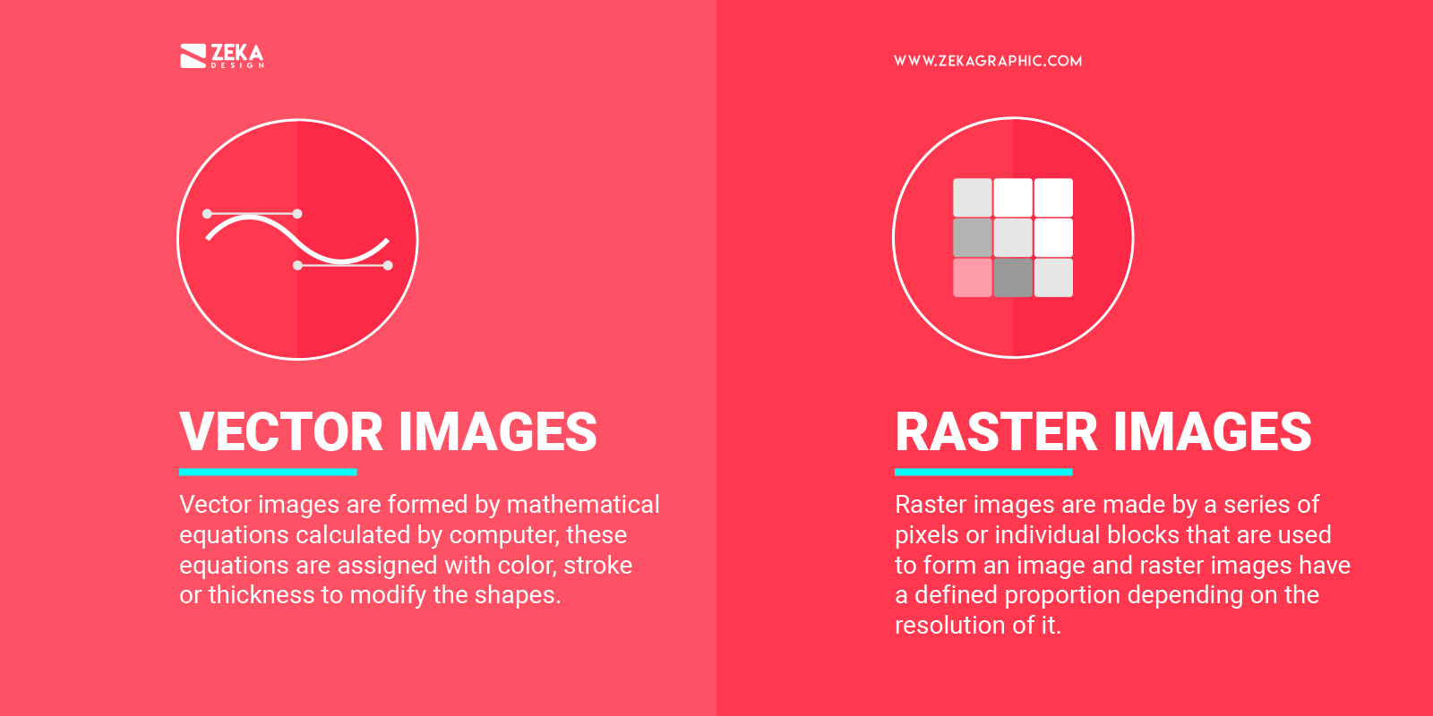 Vector Images vs Raster Images Difference Explained