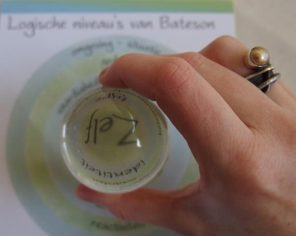 bateson - ZelfkennisLab - Bateson