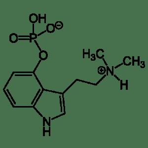 De moleculaire samenstelling van psilocybine