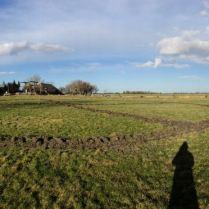 In 2017 zijn we begonnen op een voormalig stuk weiland met alleen maar gras.