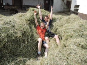 Heuernte, Kinder, Ferien auf dem Bauernhof, Zeltnerhof