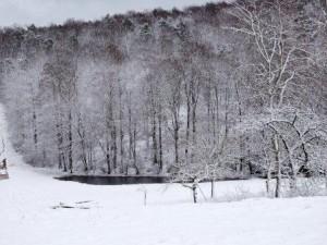 Schnee auf dem Bauernhof, Nauwiese