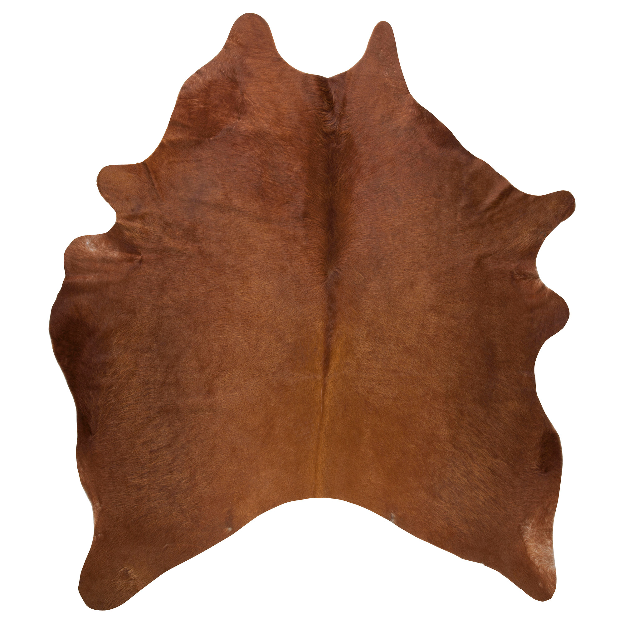 cowhide rugs hide or other animal skin