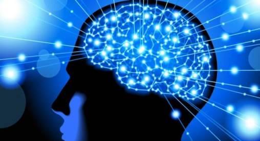 La meraviglia della mente