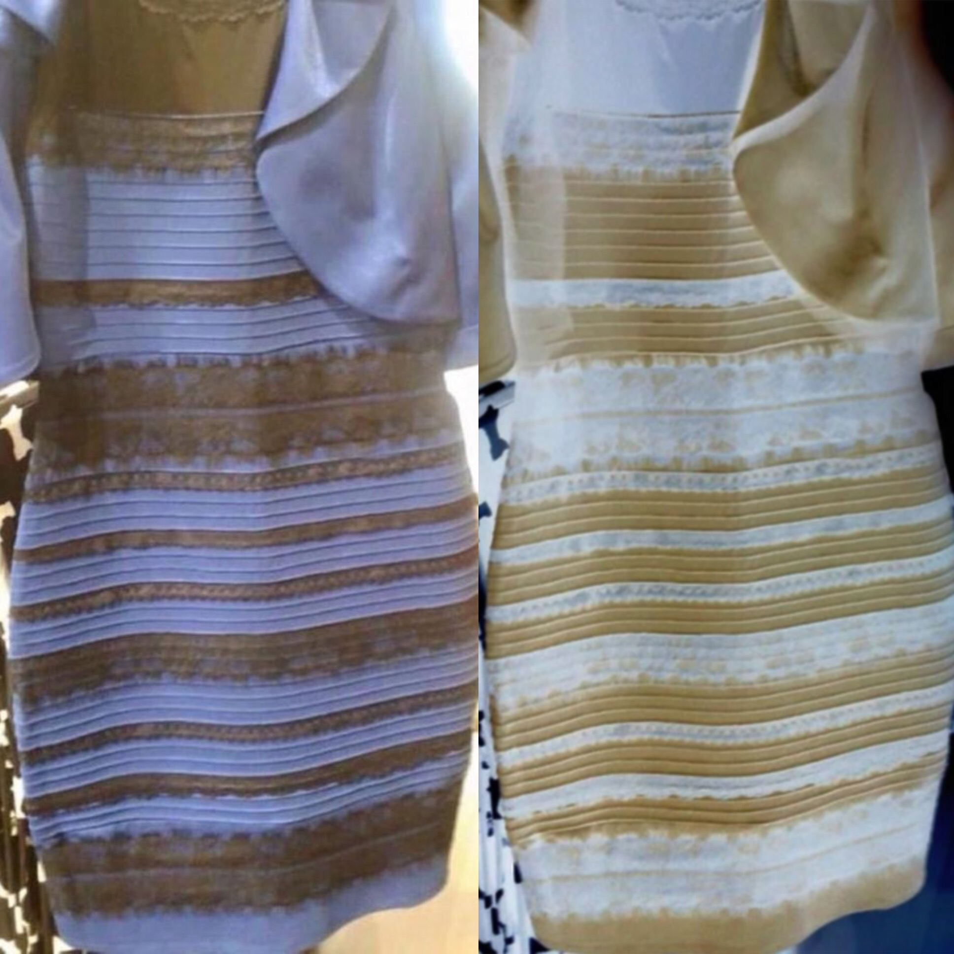 the black and blue
