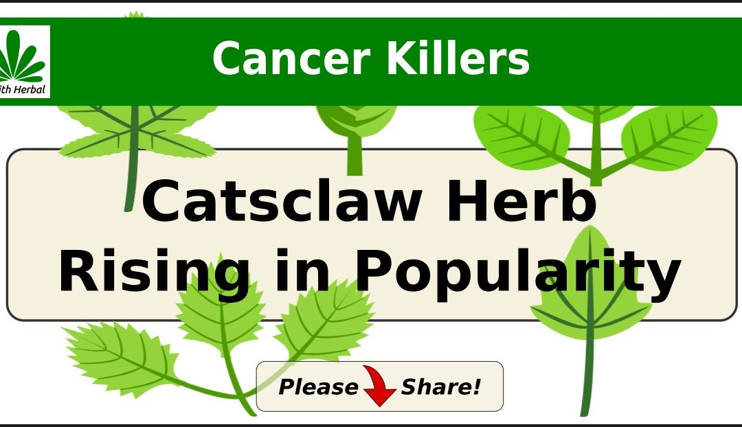 Cat's Claw for Cancer?