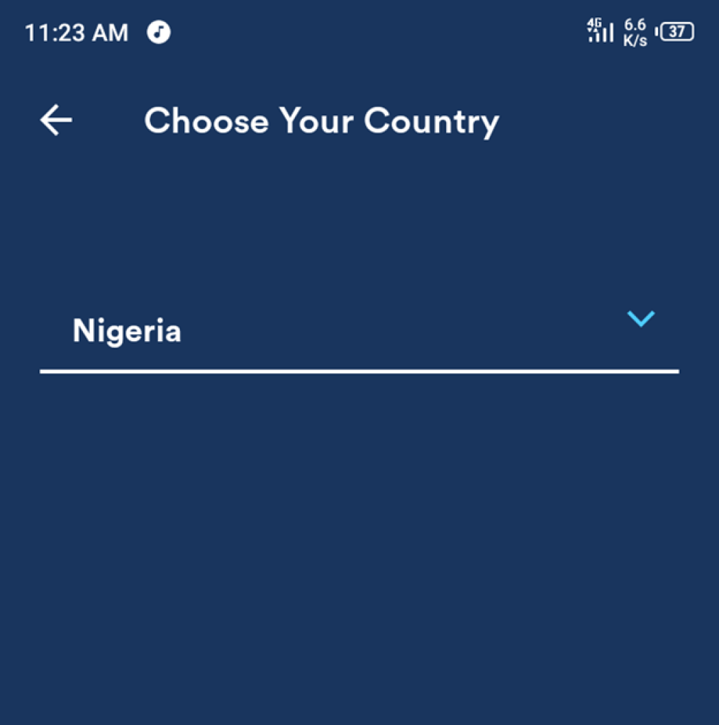Nigeria Loan Review