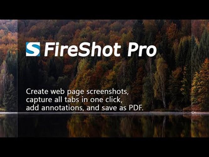 FireShot Pro
