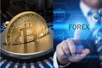 Forex & Crypto Trading