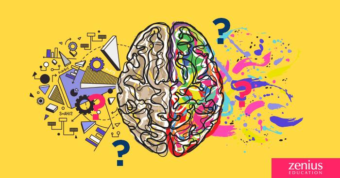Bedah Tuntas Mitos Otak Kanan / Otak Kiri 17