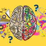 Bedah Tuntas Mitos Otak Kanan / Otak Kiri 23