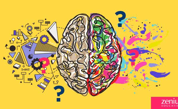 Bedah Tuntas Mitos Otak Kanan / Otak Kiri 20