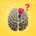 sistem kebut semalam apakah otak mampu