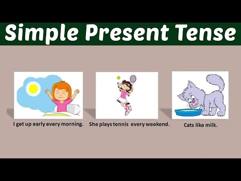 Rumus Simple Present Tense