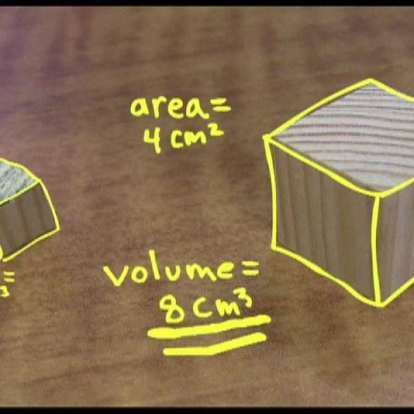 Untuk menjelaskan mengenai Square Cube Law