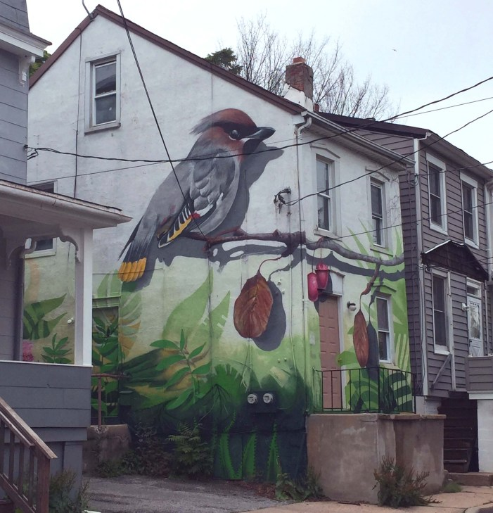 Street Art In Annapolis, MD (USA)