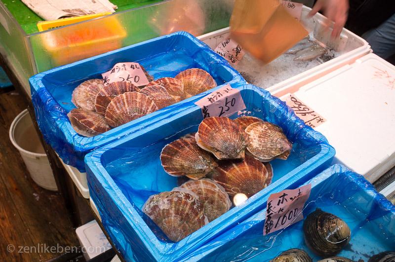 Scallops at the Tokyo Fish Market