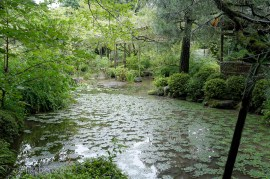 "The ""West Garden"" at the Heian Jingu Shrine"
