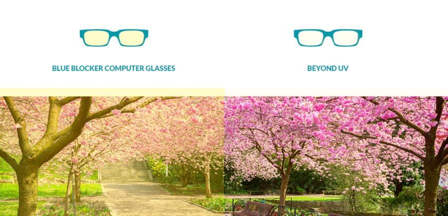 blue-blocker-vs-computer-glasses