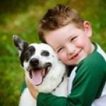 Child lovingly embraces his pet dog, a blue heeler