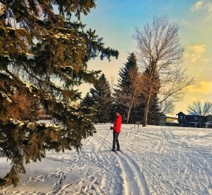Cross-Country Skiing in the city at Confederation Park