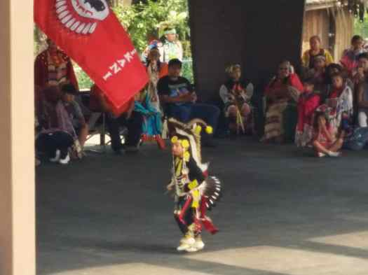 The Prairie Chicken Dance, a Familiar Site at a Powwow