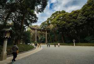 Quiet pathway leading to the Meiji Shrine in Tokyo