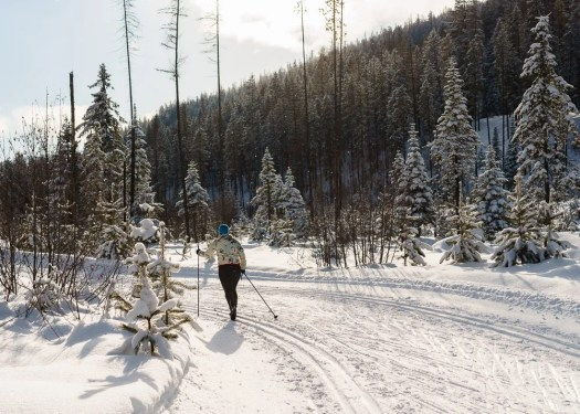 Cross-Country Skiing at Kimberly, BC