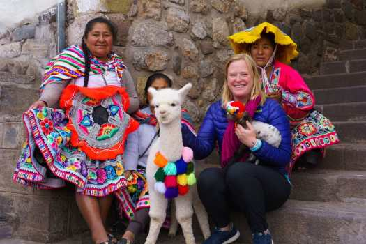 Baby Llamas in Cusco