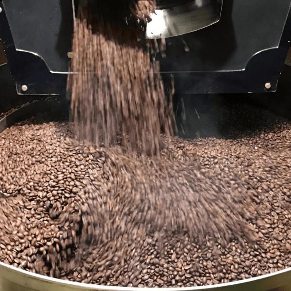 fresh roast beans enter the cooling tray of Zentvelds Roastery.