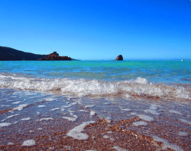 Baja Kayaking Tour Review Blues