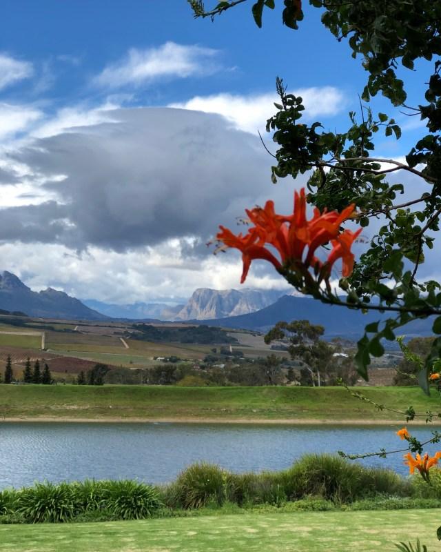 Stellenbosch Jordan Winery