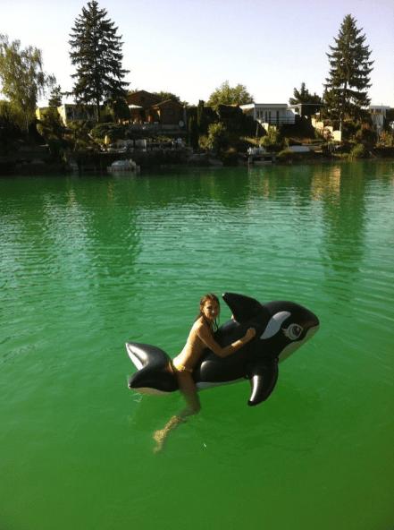 Jacqui und der Orky