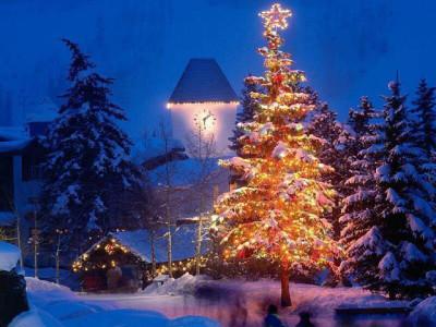 雪のクリスマスツリー