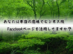 Facebook(ビジネス)ページの効果的作成
