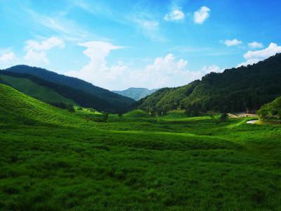 初夏の青空と緑の山々と草原